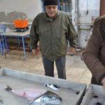 Η ψαριά περιελάμβανε κι ένα μεγάλο… λαγόψαρο