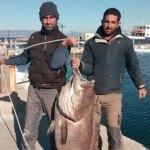 """Έπιασαν ψάρι """"θηρίο"""" 63 κιλών στην Σύρο με… καλάμι!"""