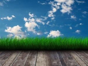 photoshop background grass sky backgrounds border empty wall textures4photoshop nature backdrops rooms clouds psd dude