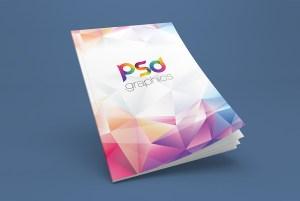 Magazine Cover Mockup Free PSD