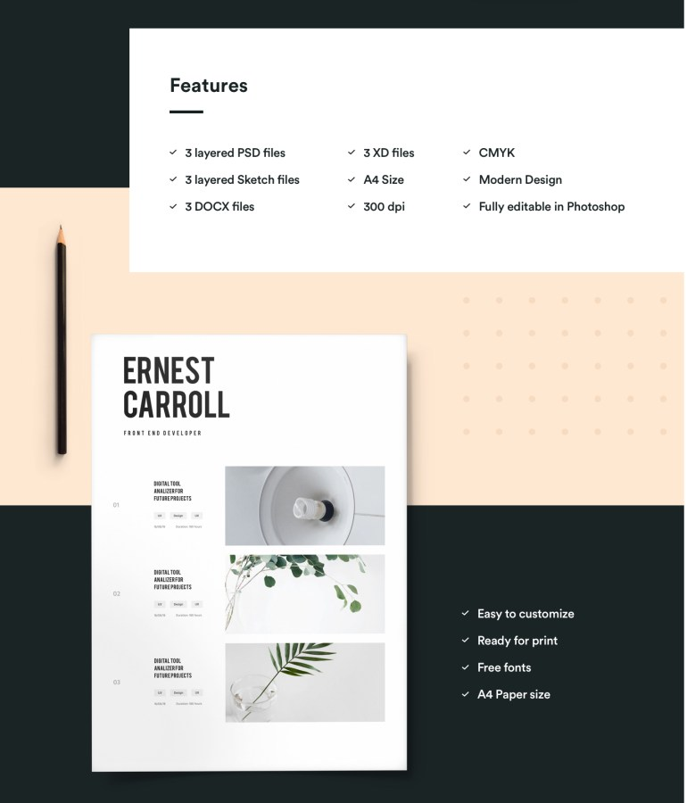 2. Free Resume Template For Developers With Portfolio
