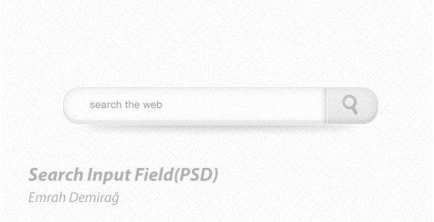 clean light web ui search field psd