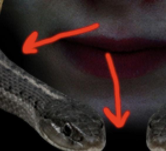 medusa16 Creating Medusa With Photo Manipulation