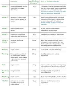 Vitamins cat nutrition final also feline vitamin and mineral guide what your really needs pet blog rh psdpetblog wordpress