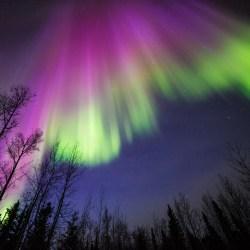 NASA aurora image from April 10, 2015, Delta Junction, Alaska