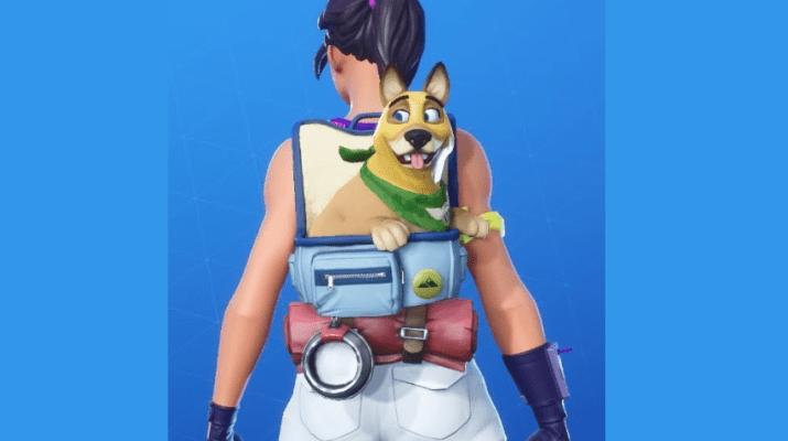 Gunner Pet Fortnite