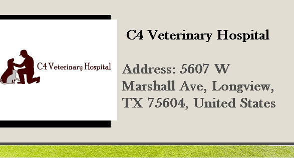 C4 Veterinary Hospital