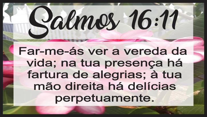 Salmo 16 11