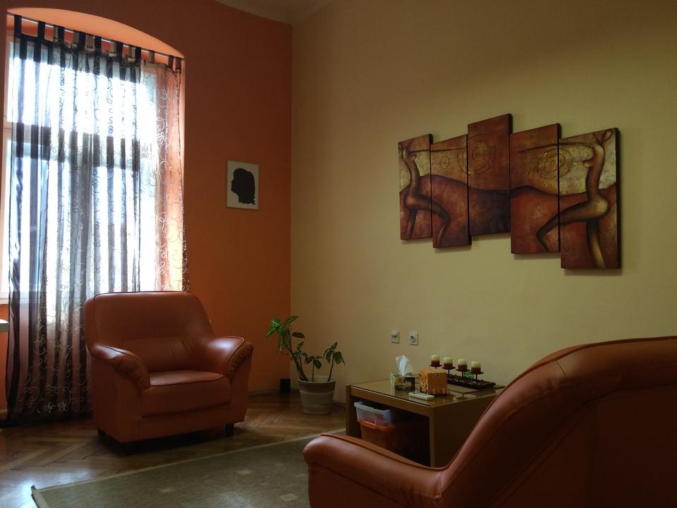 Terapijska soba Psi sano