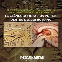 """El secreto más importante que la élite ha mantenido oculto a todos nosotros: """" La glándula pineal, un portal dentro del ser humano'"""