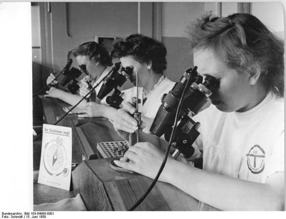 Zentralbild-Schmidt Frö-Qu 15.6.1959 Zum Chemieprogramm der DDR: Spinndüsenfabrik Gröbzig vervierfacht Produktion Die Werktätigen der volkseigenen Spinndüsenfabrik Gröbzig (Kreis Köthen) haben in ihrem Perspektiv- und Rekonstruktionsplan festgelegt, dass die Produktion dieses bezirksgeleiteten Betriebes bis 1965 auf mehr als das vierfache steigt. Damit haben sie die vom Rat des Bezirkes vorgegebenen Orientierungsziffern noch um etwa ein Drittel überboten. Das Kollektiv dieses Betriebes, der als einziger in der DDR Spinndüsen für die Chemiefasererzeugung herstellt, unterstützt damit das erste deutsche Chemieprogramm, wonach die Produktion von Chemiefasern in den nächsten sieben Jahren vervielfacht wird. Besonders stark soll die Fertigung von Spinndüsen für vollsynthetische Fasern zunehmen, um das in Guben entstehende Chemiefaserkombinat auszurüsten. UBz. V.l.n.r.: Die Kolleginnen Frühauf, Herbst und Jännert beim Stechen von Düsen, die Größen von einigen hundertstel Millimetern aufweisen.