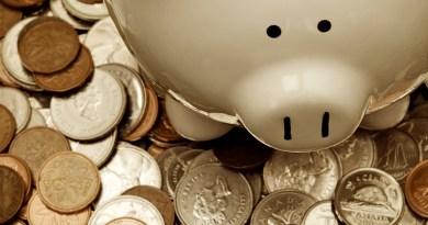dinheiro, grana, cédulas, moeda, porquinho, economia, riqueza