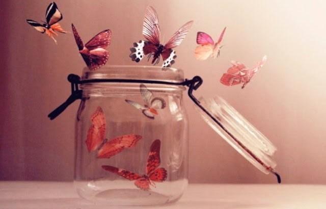tudo parece ir mal, borboletas no pote, liberdade