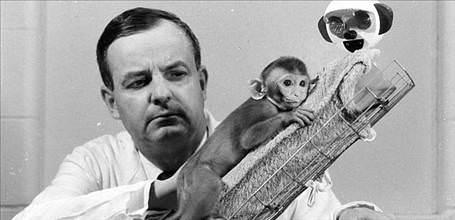 Harry Harlow, macacos rhesus e isolamento social