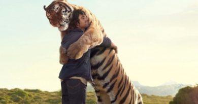 Homem abraçando tigre