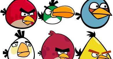 Ornitofobia - medo de aves