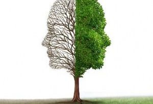 transtorno borderline bipolaridade