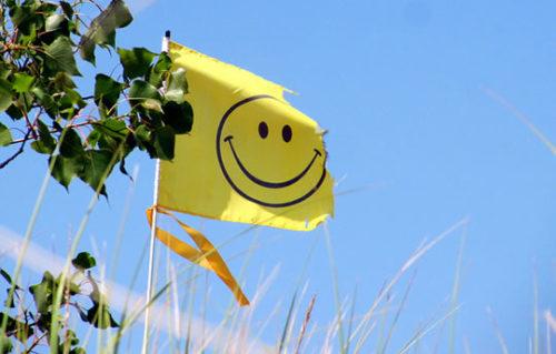 bandeira-smile