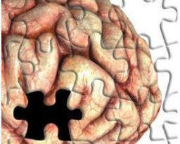 Amnésia dissociativa - cerebro quebra cabeca