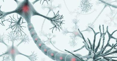 é uma célula nervosa que é o bloco de construção básico do sistema nervoso.