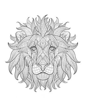Desenho para colorir antiestresse - leao