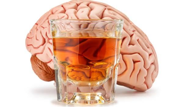 cerebro alcool - bebida alcoolica