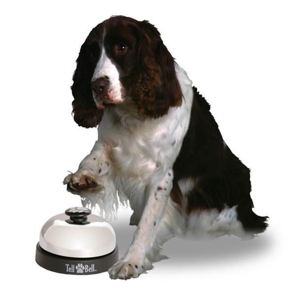 cachorro-sino-condicionamento-classico