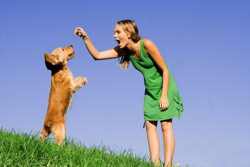 mulher com cachorro - treinamento canino - reforco - condicionamento operante
