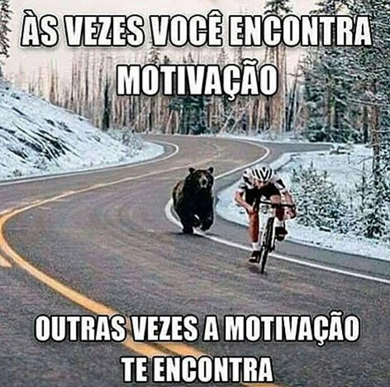urso correndo atras de ciclista