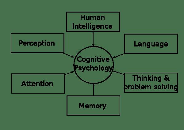 psicologia_cognitiva