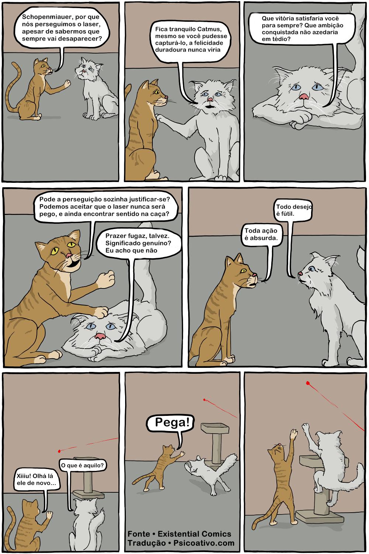 gato-filosofia2