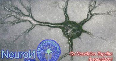Neurônios Espelho, Empatia, Modelação e Aprendizagem Vicariante (Vídeo)