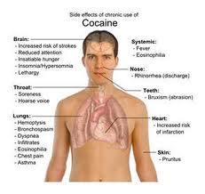 cocaina 13