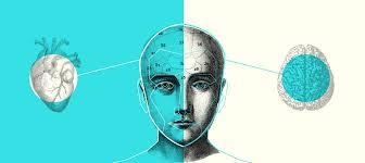 ideas-irracionales-10