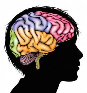 Daniel Siegel habla en TED sobre el poder Mindsight en la educación