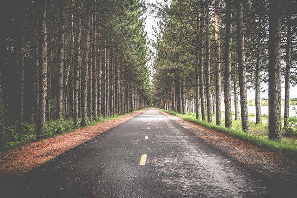 Diez Consejos para Mejorar tu Vida