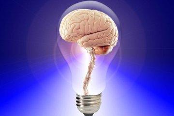 persona-intelligente-dott-roberto-re-psicologo-senigallia