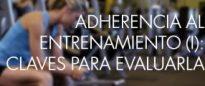 adherecia-entrenamiento-web