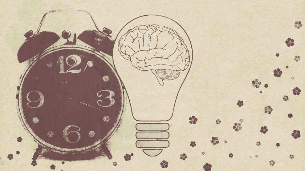 celulas del tiempo cerebro