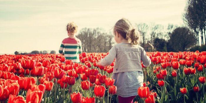 Dečiji psiholog - Psiholog Viktorija - Psiholog savet