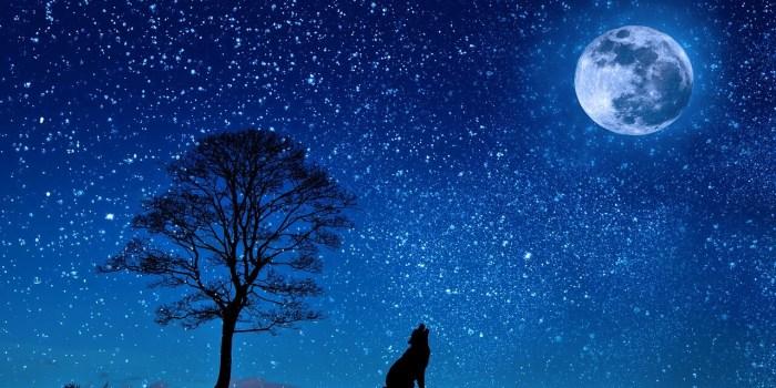 Noćni strahovi kod dece 3 - Deciji psiholog - Psiholog Viktorija