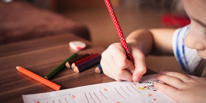 Radne navike kod dece - Deciji psiholog - Psiholog Viktorija
