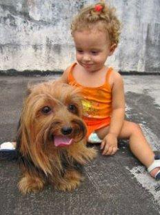 animal_children_Terrier_248550_l