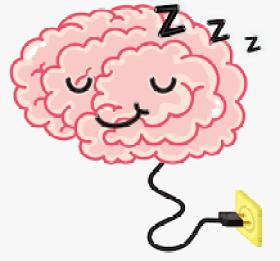 beyin   - imalknges - Uyku