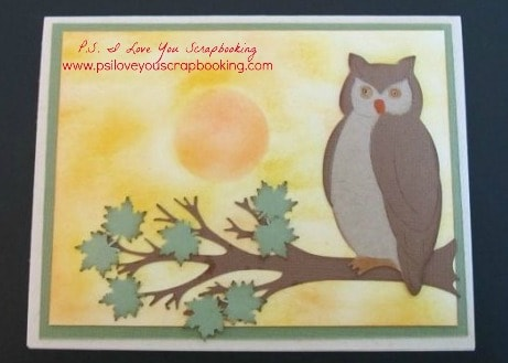 The Animal Kingdom Cricut Cartridge features all kinds of animals, phrases, bookmarks, borders, and more. They are great for school projects, bulletin boards, cards, party decorations, and scrapbook pages.