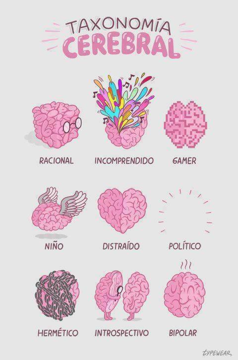 Taxonomia-Cerebral