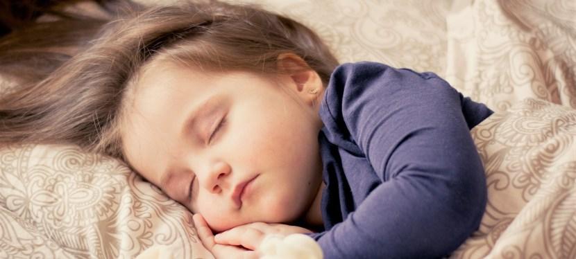 El sueño: ¿aprendizaje o evolución?