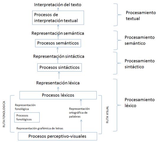 Esquema de los componentes de la comprensión lectora