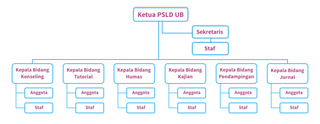 This organizational structure shows how CDSS UB works as coherent as usual. The chief of CDSS UB is at the top of the structure, followed by other parts of structure which follow the instruction of the chief and coordinate between them.