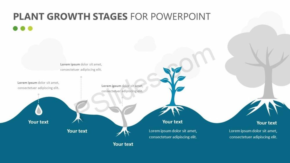 medium resolution of  plant growth stages diagram for powerpoint slide 2